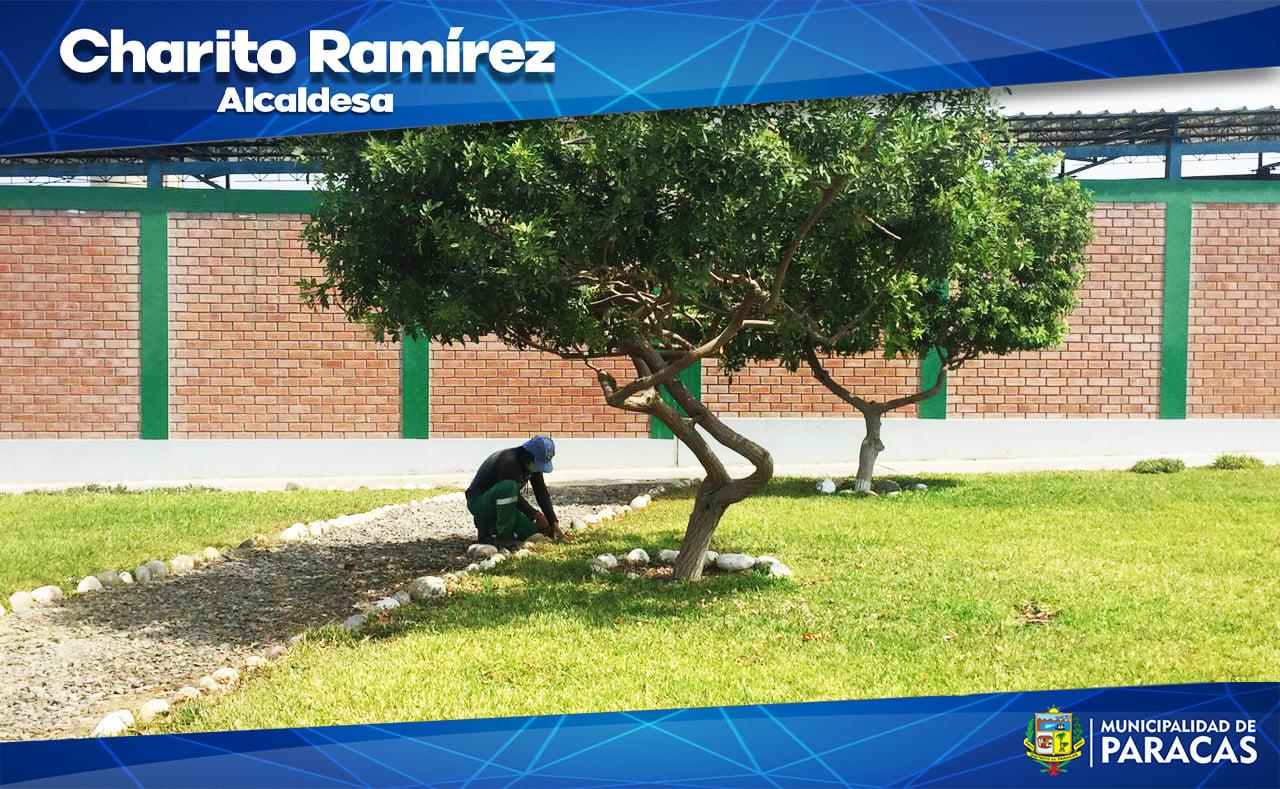 Thumbnail for the post titled: ✅🛑 CHARITO RAMÍREZ POR MÁS ÁREAS VERDES