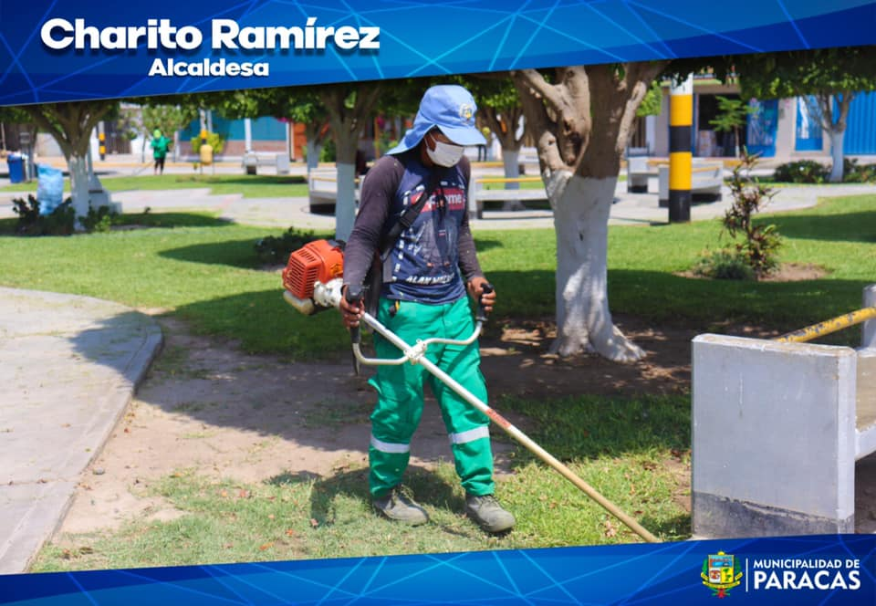 Thumbnail for the post titled: CHARITO RAMÍREZ ¡POR MÁS ÁREAS VERDES!